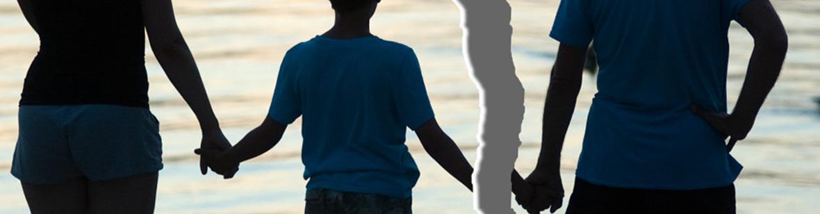 Alienação Parental, O que é Alienação Parental?