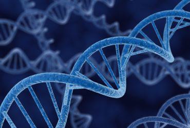 Justiça determina teste de DNA de última geração para esclarecer caso de 30 anos